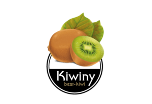 Kiwiny-Partner-MARKETERs-Festival